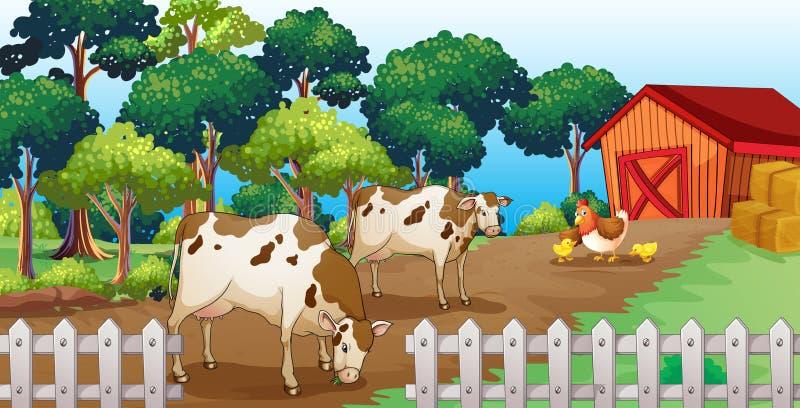 Gospodarstwo rolne z zwierzętami wśrodku ogrodzenia ilustracja wektor