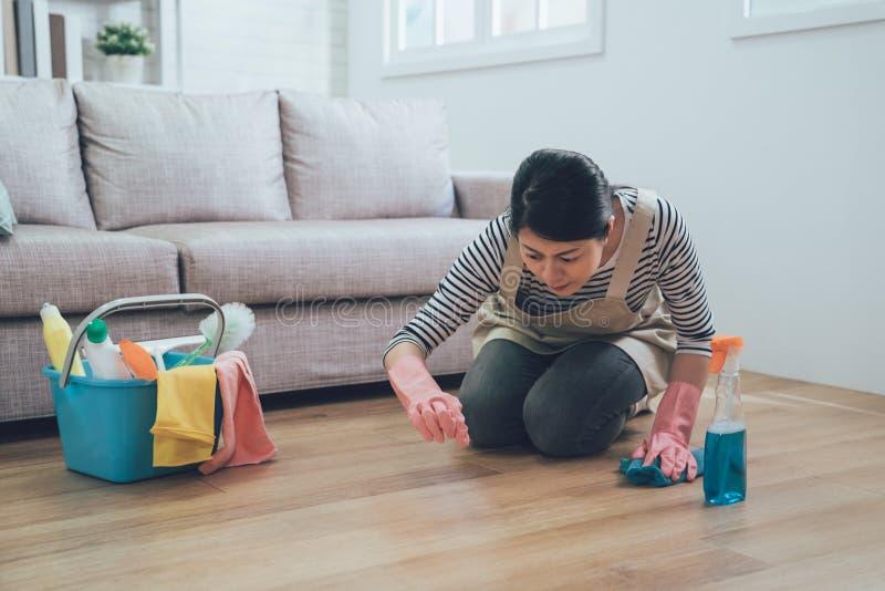 Gospodyni domowa robi sprzątaniu i housekeeping obrazy stock