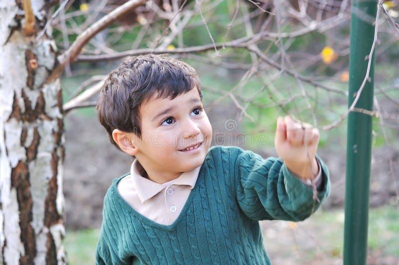 Gosse mignon positif heureux extérieur photos libres de droits
