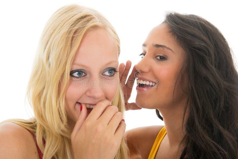 Gossip in bianco e nero delle ragazze fotografie stock