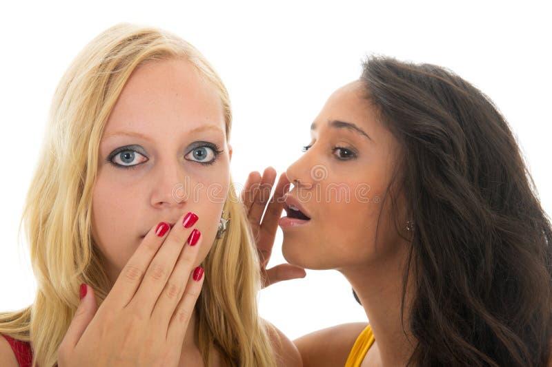 Gossip in bianco e nero delle ragazze fotografia stock