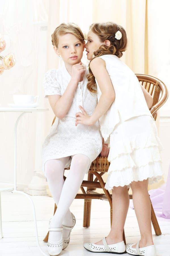 Gossip girls. Portrait of two gossiping girls stock images