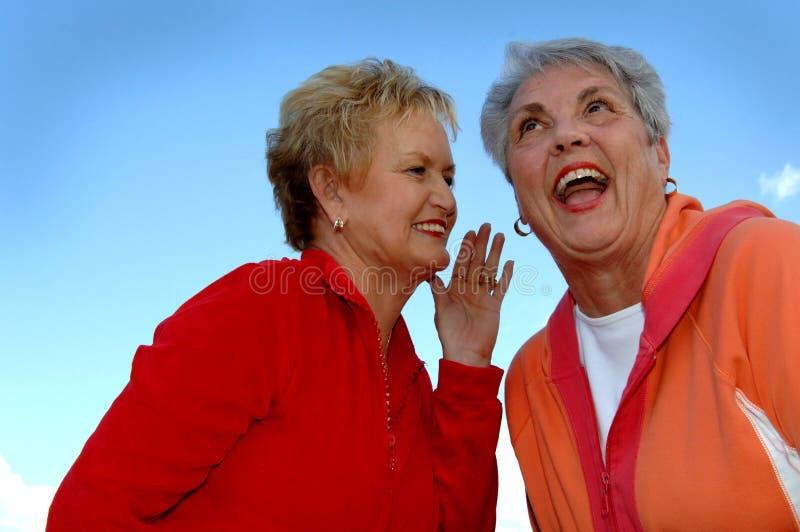 Gossiping senior women stock photo