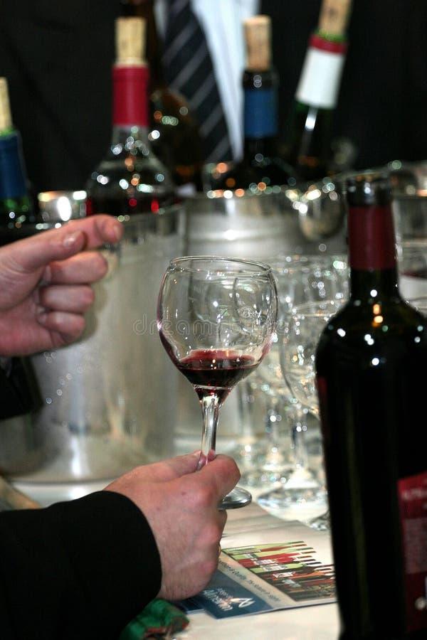 Gosto De Vinho Imagens de Stock