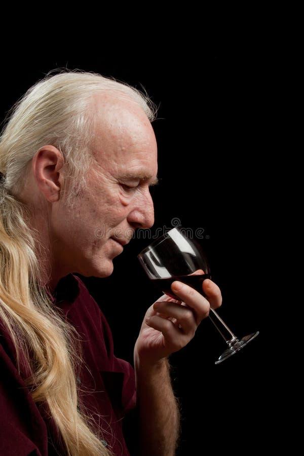 Gosto de vinho, retrato foto de stock royalty free