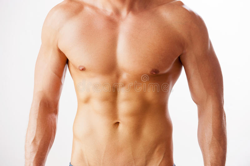 He got perfect torso. Close-up of young muscular man with perfect torso standing against white background royalty free stock photography