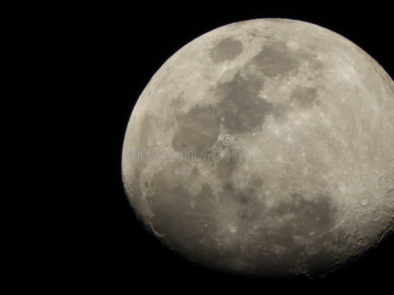 Moon shot up alone. Got this pic while exploring at night time moon shot royalty free stock photo