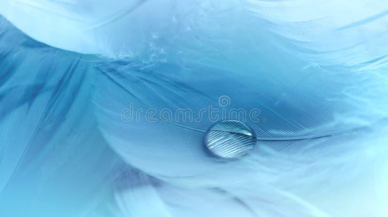 Gota da água em um fundo azul macio macro da pena ilustração stock