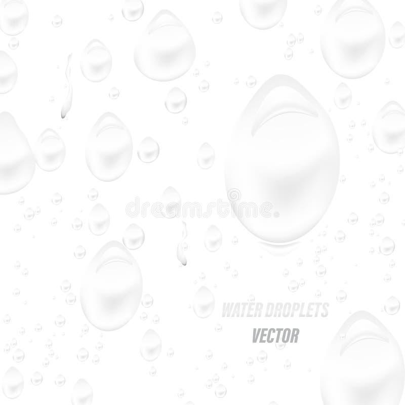 Gota da água em um vetor branco da cena ilustração royalty free