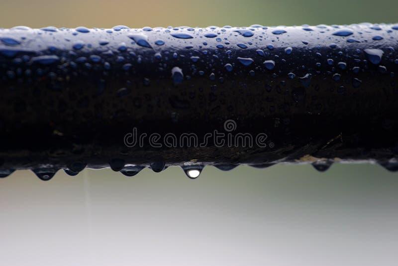 Gota da chuva fotos de stock royalty free
