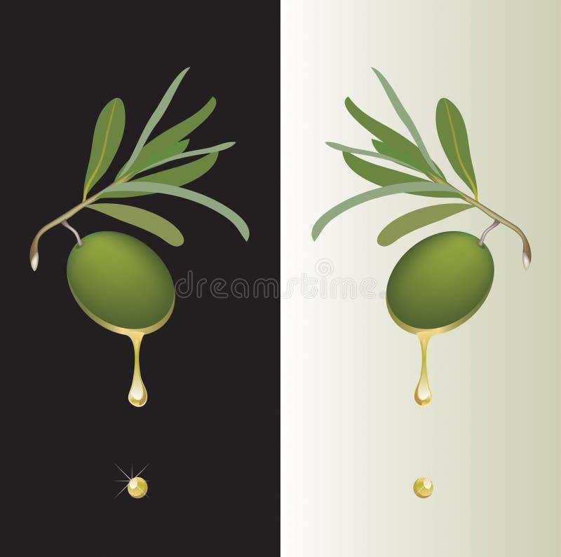 Gota de aceituna verde ilustración del vector