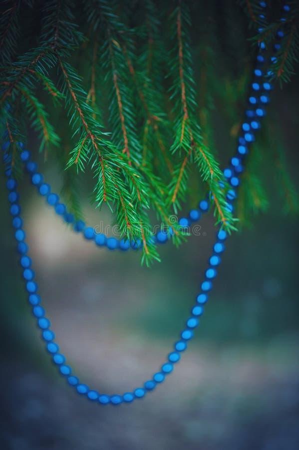 Gota de la decoración de la Navidad en la rama del abeto imágenes de archivo libres de regalías