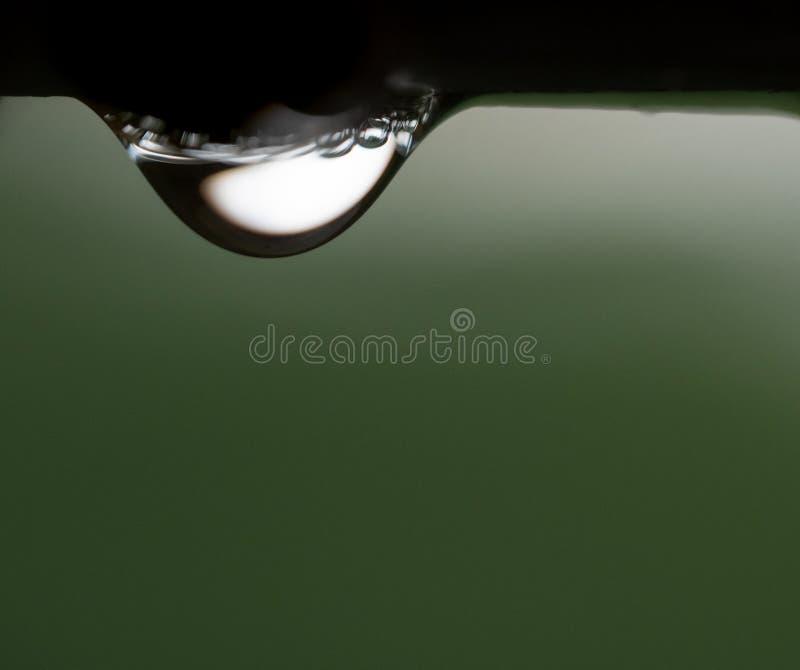 Gota de lluvia de la mañana fotos de archivo