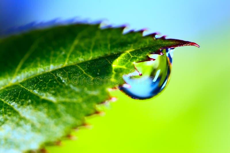 Gota del agua fotografía de archivo