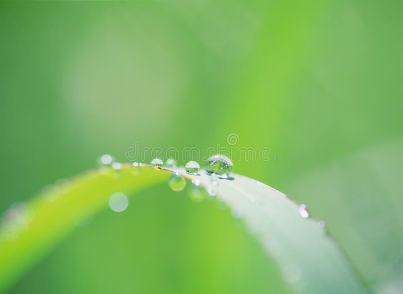 Gota del agua fotos de archivo libres de regalías
