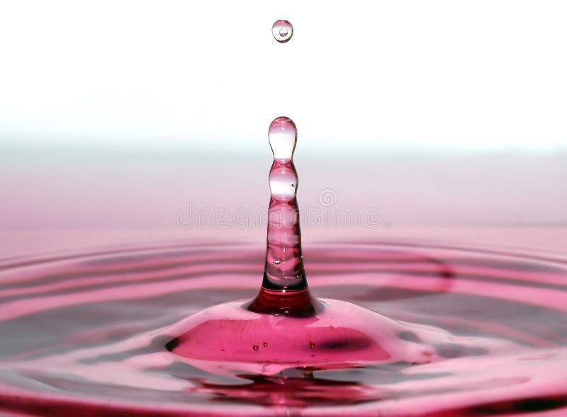 Gota del vino foto de archivo