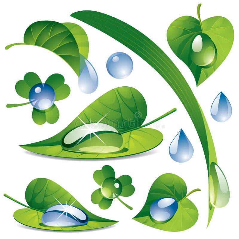 Gotas da água com folhas ilustração do vetor