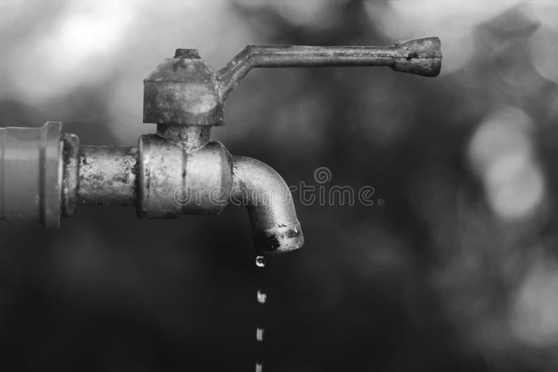 Gotas da água do torneira velho foto de stock royalty free