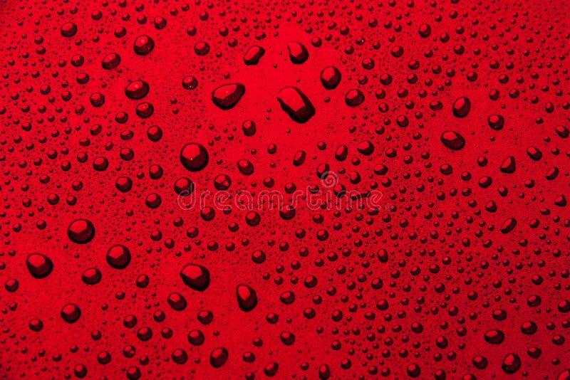 Gotas da água em um fundo da cor Vermelho fotos de stock