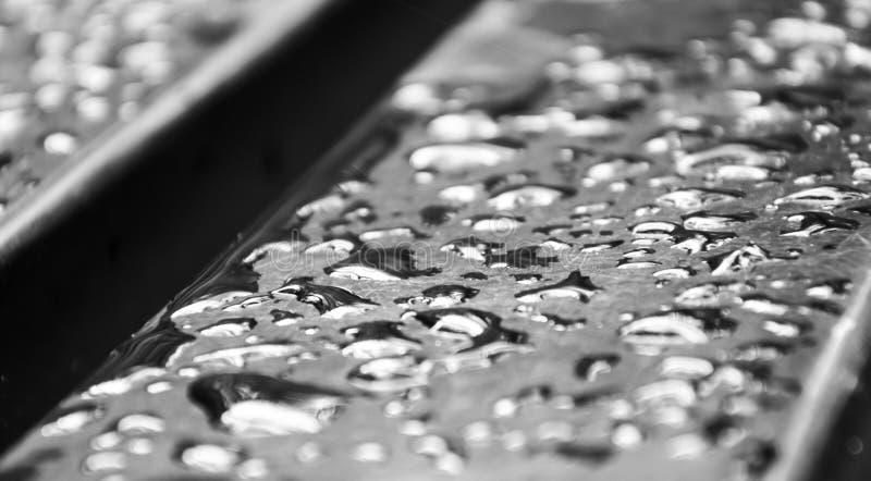 Gotas da água na foto do monochrome do banco Imagem bonita, backgr fotos de stock royalty free