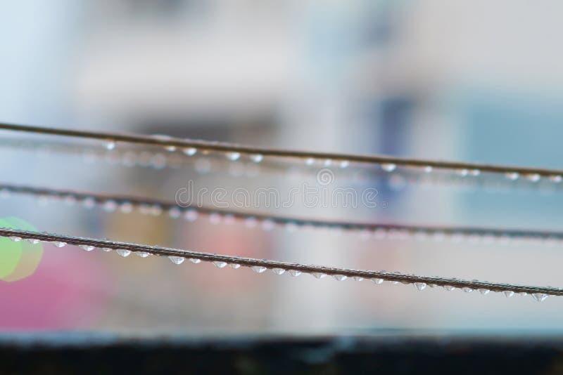 Gotas da chuva na corda fotografia de stock royalty free