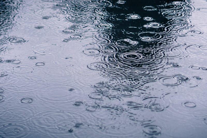Gotas da chuva que rippling em uma poça fotos de stock royalty free