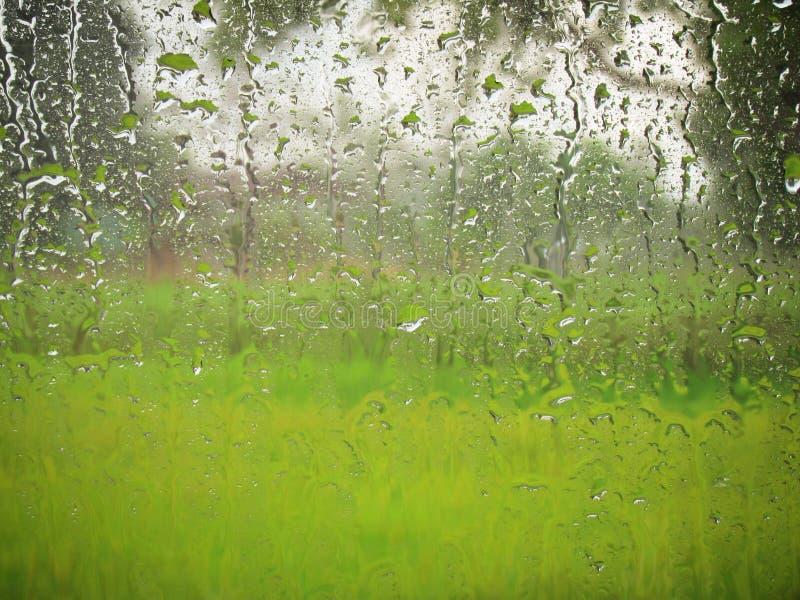 Gotas de agua en la ventanilla del coche y visiones verdes naturales desde el exterior en un día lluvioso fotografía de archivo