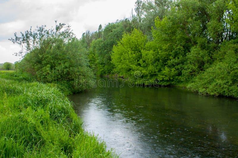 Gotas de la lluvia en el río imagen de archivo libre de regalías