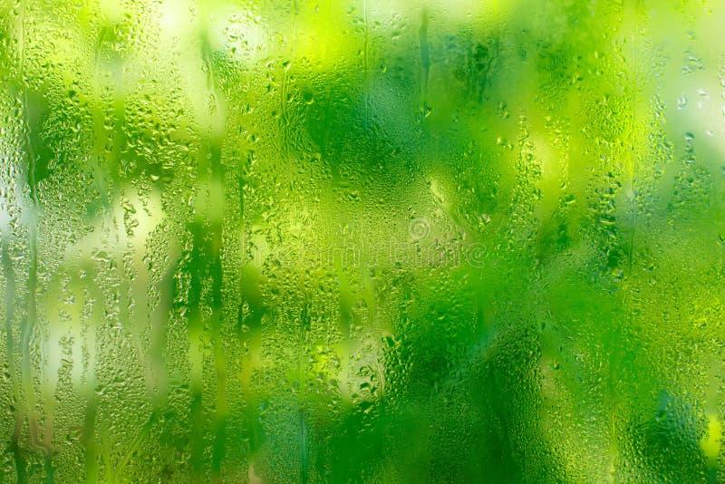 Gotas de la lluvia sobre un vidrio imagen de archivo libre de regalías