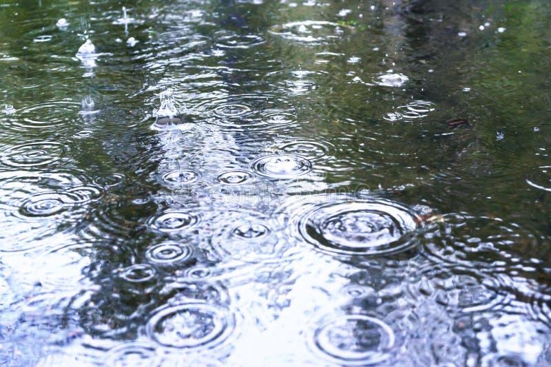 Gotas de lluvia en la superficie de un camino de la calle en un día lluvioso fotografía de archivo libre de regalías