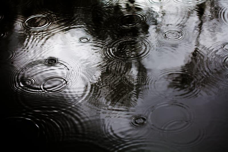 Gotas de lluvia en un charco Concepto de tiempo lluvioso del otoño con las ondas de las gotitas de agua Profundidad del campo baj imagen de archivo