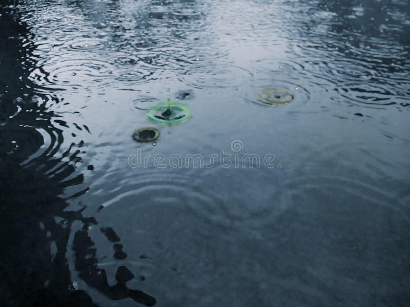Gotas de lluvia Las ondas coloreadas sobre la superficie del agua Lluvia de llovizna imagen de archivo libre de regalías