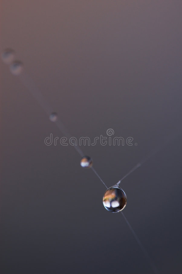 Gotas de rocío fotos de archivo
