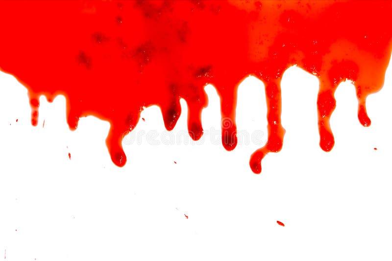 Gotas del primer de la sangre roja aisladas en el fondo blanco, modelo abstracto fotos de archivo