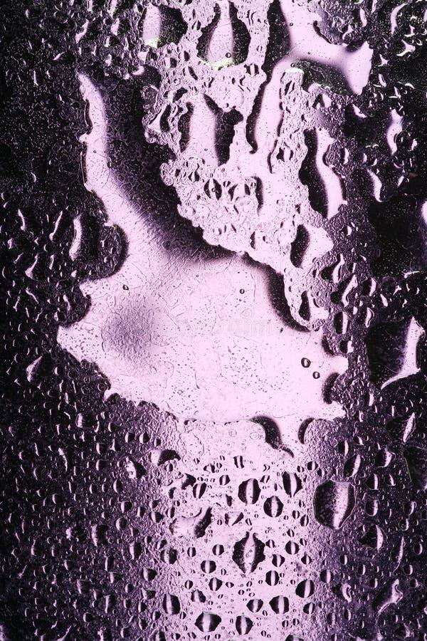 Gotas do Lilac foto de stock