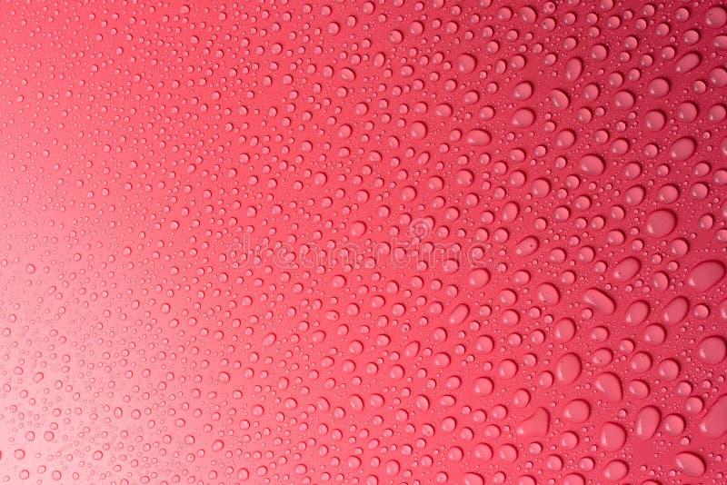 Gotas em um cor-de-rosa, fundo da água do resíduo metálico iluminado com uma luz delicada fotografia de stock royalty free