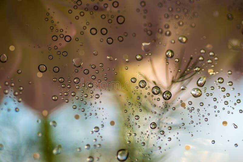 Gotas sobre un vidrio imagenes de archivo