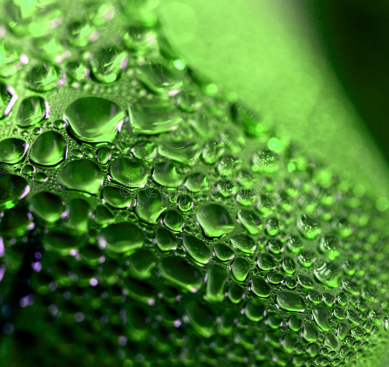 Gotas verdes fotos de archivo libres de regalías