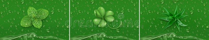 Gotas verdes Hortelã, trevo, aloés vetor 3d ilustração stock