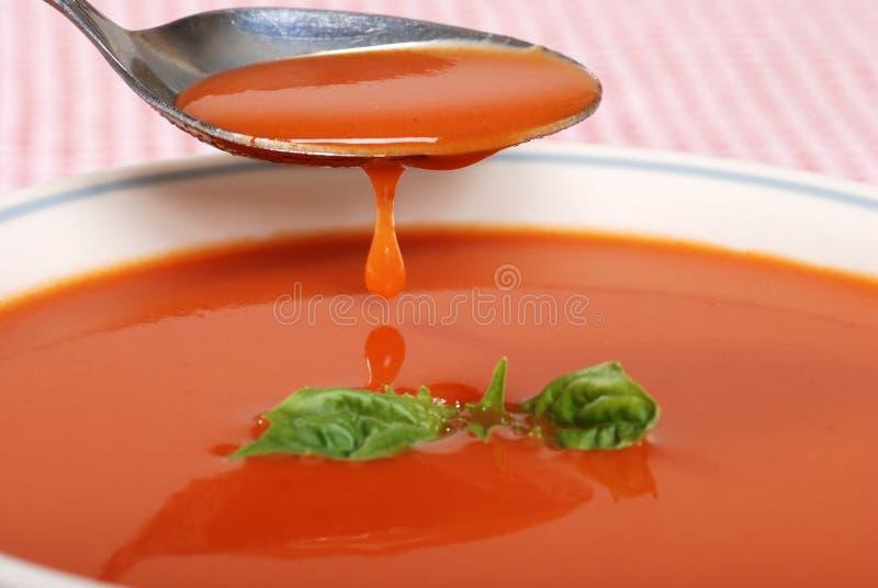 Gotejamento da sopa do tomate fora de uma colher imagem de stock royalty free