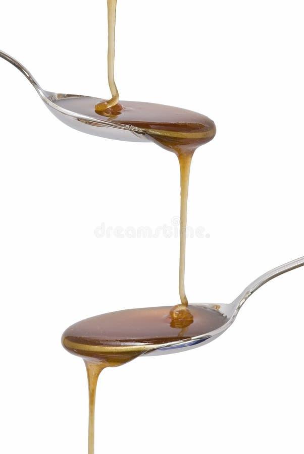 Gotejamento do mel. imagens de stock royalty free
