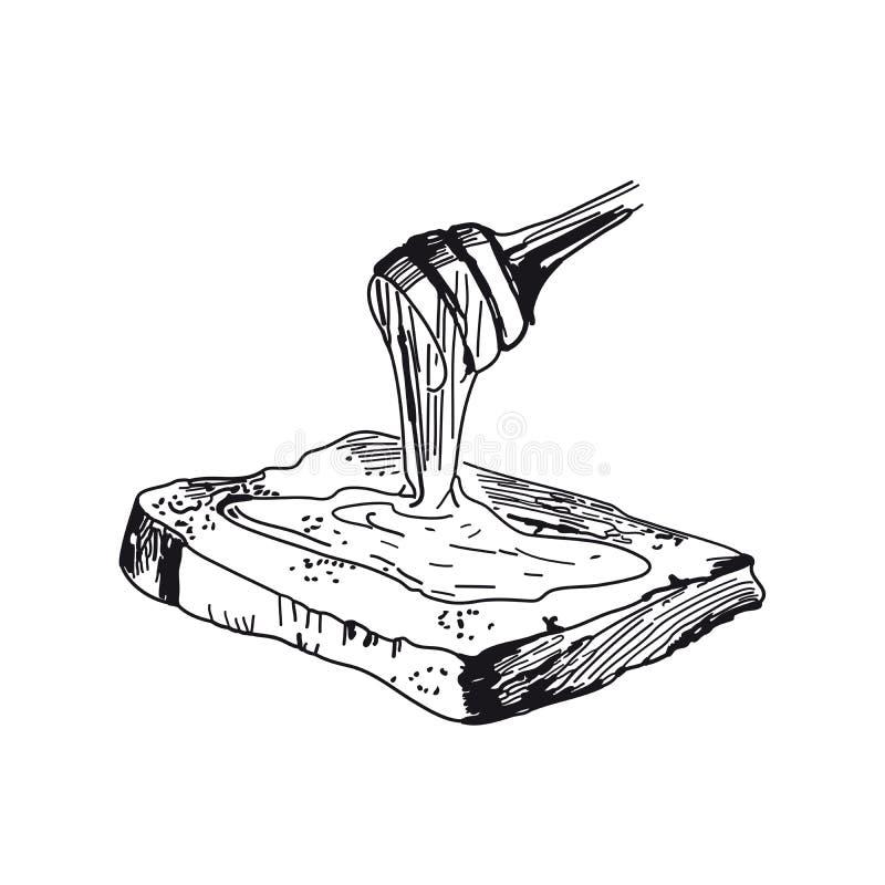 Gotejamento do mel do dipper de madeira esboços do vetor ilustração stock
