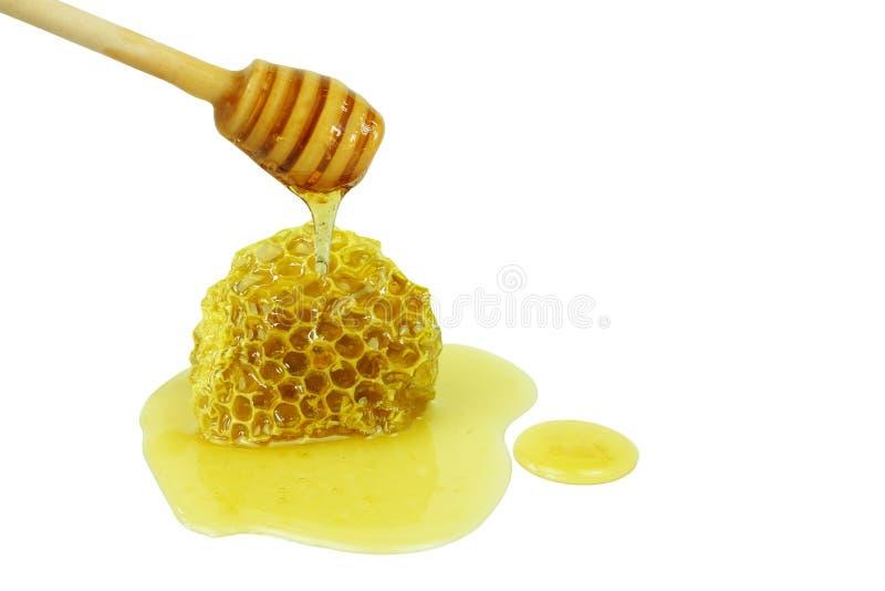Gotejamento do mel no dipper de madeira que derrama no favo de mel isolado em um fundo branco, conceito de produtos da abelha fotos de stock