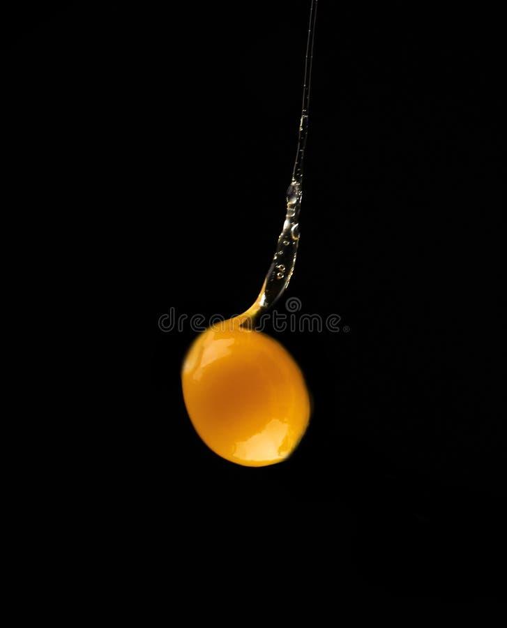 Goteo de la yema de huevo, cayendo en fondo negro fotos de archivo libres de regalías