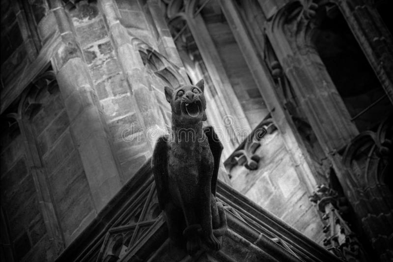 Gothic gargoyle of the St.Vitus Cathedral in Prague. Particular of the St. Vitus gothic cathedral in Prague. A gargoyle in the shape of a imaginary animal: a cat stock images