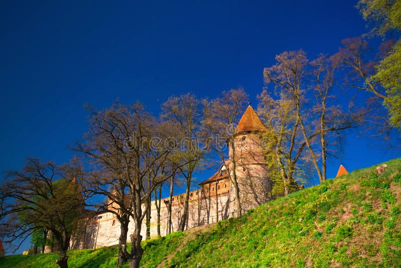 Gothic teutonic Knights castle next to blue sky and trees royalty free stock photography