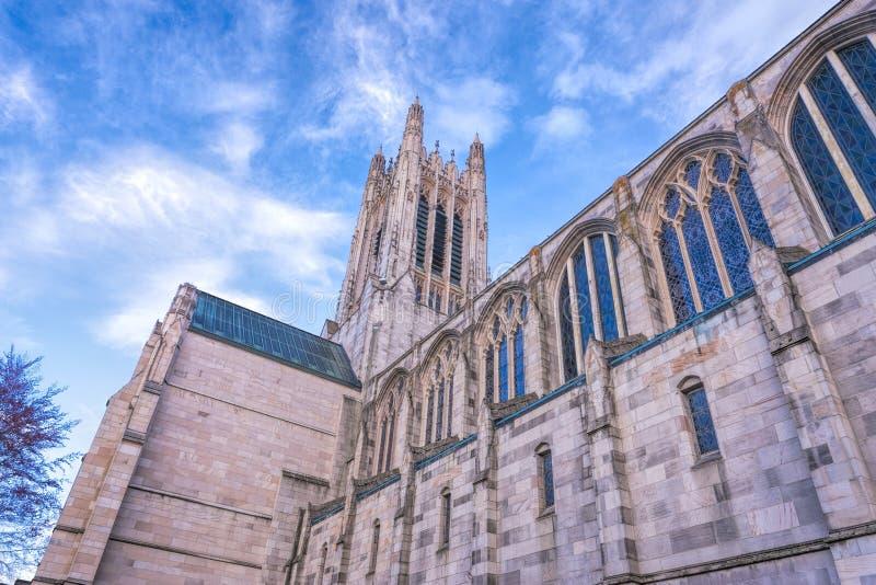 Gotische Architectuur stock afbeeldingen