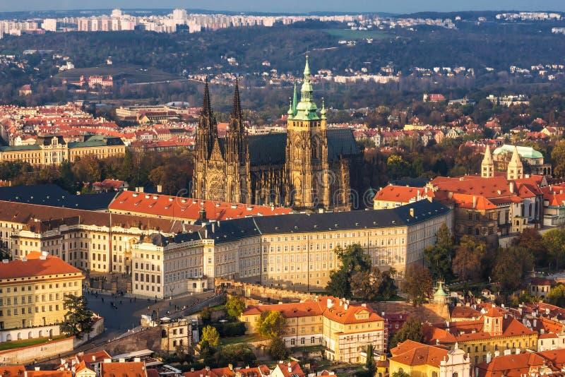 Gotische kathedraal (st Vitus, Praag) stock fotografie