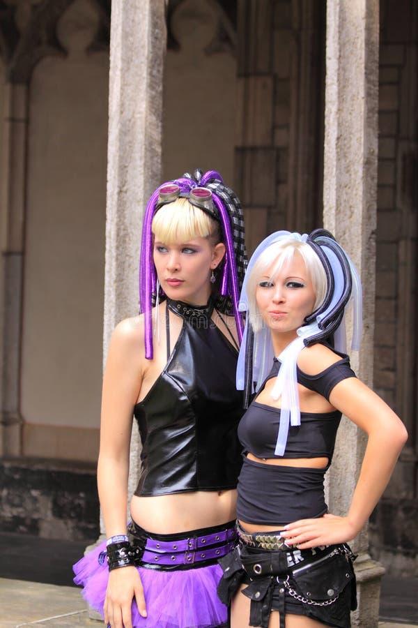 Download Gotische meisjes stock afbeelding. Afbeelding bestaande uit haar - 10781203
