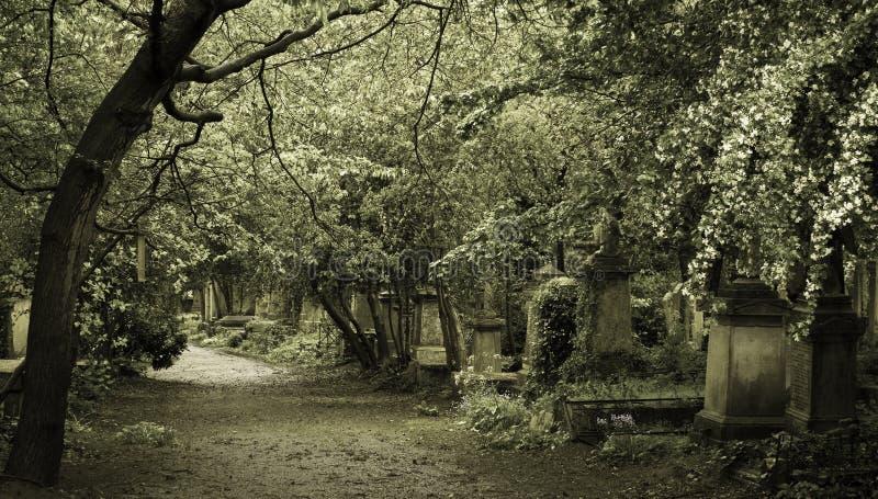 Gotischer Friedhof in London-Stadt stockfotografie